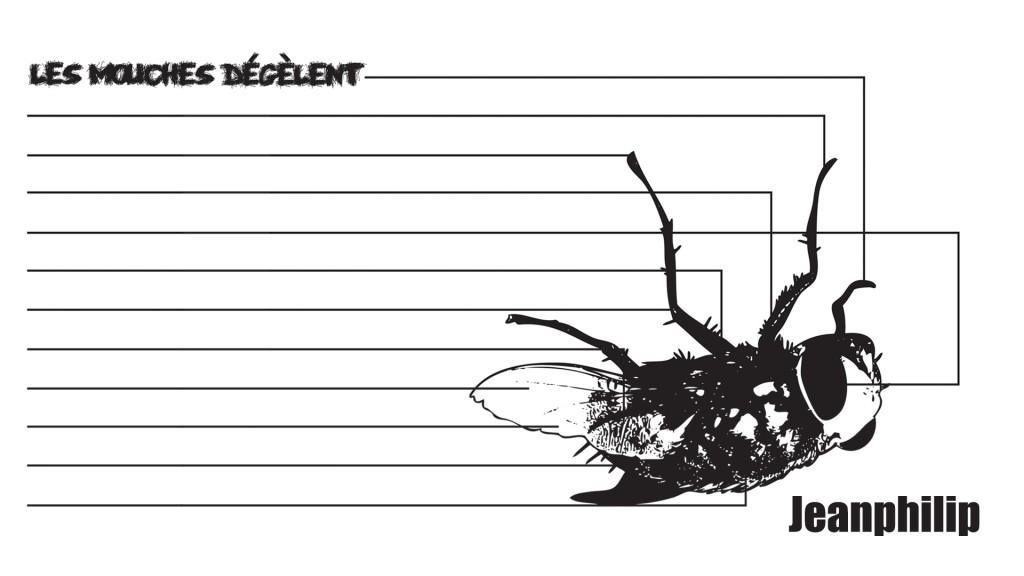 Jeanphilip | Les mouches dégèlent