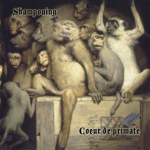 Shampouing / Coeur de primate